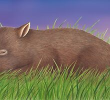 Let's Count Kisses - Sleeping Wombat by Karen  Hull