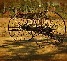 Old Rusty Hay Rake by Kathy Baccari