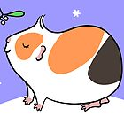 Guinea-pig Under the Mistletoe  by zoel