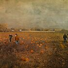Pumpkin Pickers by enchantedImages