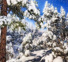 Let it Snow by Saija  Lehtonen