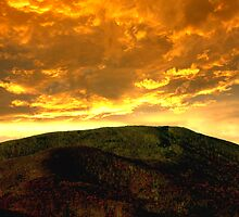 Blue Ridge Gold by Tim Scullion