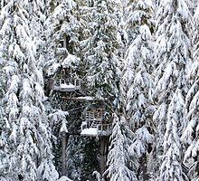 Rocking Around the Christmas Tree by Janice Chiu