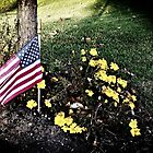 """Veterans Day 11-11-11"" by Anthony Cherubino"