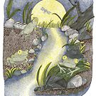Frogs at Night by Judy Newcomb