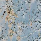 Rusty and crusty  by LynnEngland