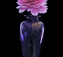 Dahlia In Evening Dress by Greg Summers