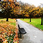 Fall park by cycreation