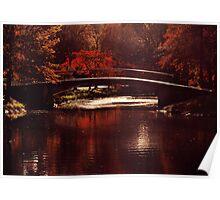 Autumnal Sunshine Poster