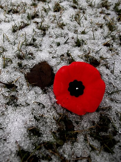 Lest We Forget by Steph Peesker