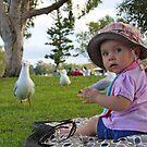 Feeding The Gulls by Duncan FitzGerald
