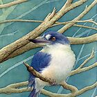 Forest kingfisher by Laura Grogan