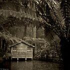 Rainy Days by Darren Clarke