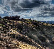 Crickley Hill by Rebsie Fairholm