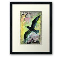 Birds soaring upwards Framed Print