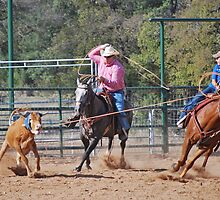Steer Roping by Cathy Jones