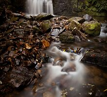 Strickland Avenue Falls by Martin Canning