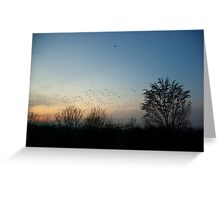 A fascinating evening view... Greeting Card
