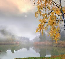 Fog in November by Igor Zenin