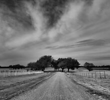 Down the Road by Carrie Bonham