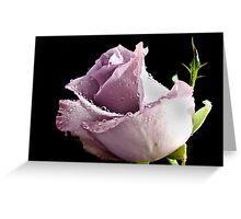 Lavender Rose Greeting Card