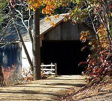Old Sturbridge Village Covered Bridge, Autumn 2011 by ZeroLimitStudio