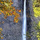 Latourell Falls, Oregon by Kathy Yates