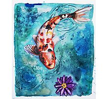 Koi Pond Photographic Print