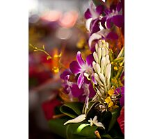 Orchids Menagerie Photographic Print