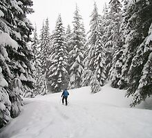Snowshoeing by YogiColleen