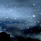 Clear Starry Night © by Dawn M. Becker