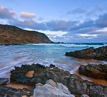 Petrel Cove  by Robert Sturman