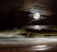 Luna Coastscape by flexigav