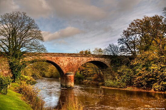 That Bridge Again by David J Knight