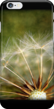 Make a Wish- iPhone Case by Sarah Donoghue