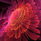 Blooming Pink by Belinda Osgood