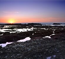 Moss Beach Tide Pools by Matt Hanson