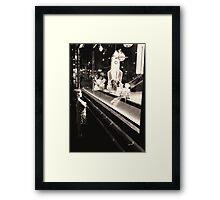 Reserving judgement Framed Print