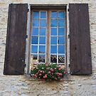 Flowery Window by Anne Hargreaves