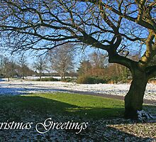 Christmas Greetings by RedHillDigital