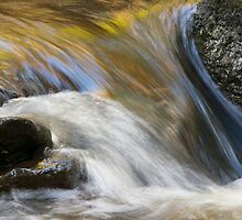 Flowing by Cliff Williams