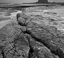 Bamburgh Castle No3 by StephenRB