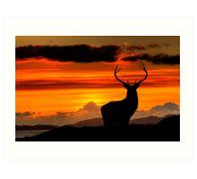 Monarch of the Glen at sunset Art Print