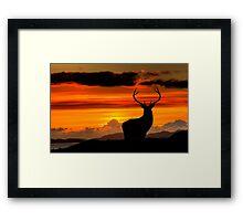 Monarch of the Glen at sunset Framed Print