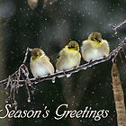 Seasons Greetings - Snowy Trio by Lori Deiter