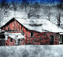 Santa's Outhouse  by Donnie Voelker