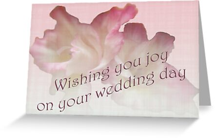 Wedding wishes card gladioli greeting cards by mothernature greeting cards tags gladiola wedding wishes m4hsunfo