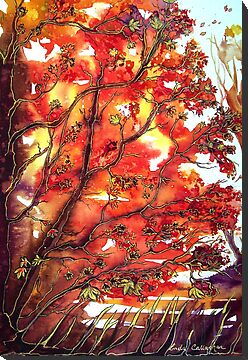 Autumn Song  by © Linda Callaghan