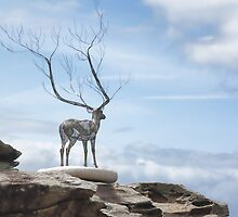Sculptures by the Sea - The Deer by yolanda
