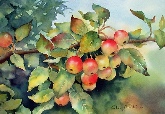 Green crab apples by Ann Mortimer